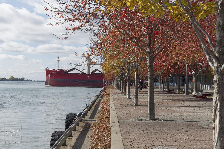 Water's Edge Promenade facing Jarvis Slip